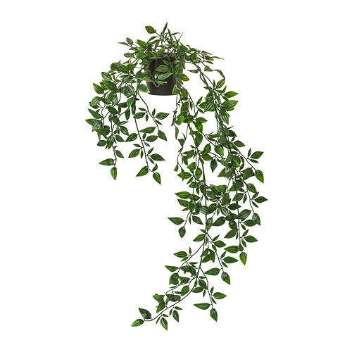 人造盆栽, 室內/戶外用/眼樹蓮,